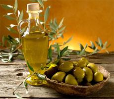 Aceite de oliva virgen extra, aceitunas, empresas agropecuarias, extremadura, tierra de barros